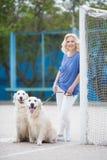 有室外两只金黄的拉布拉多猎犬的白肤金发的妇女 库存图片