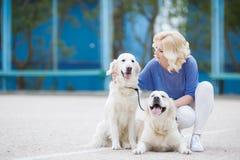 有室外两只金黄的拉布拉多猎犬的白肤金发的妇女 图库摄影