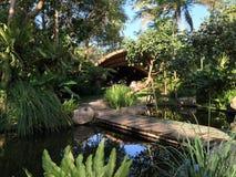有密林庭院作用的自然桥梁 图库摄影