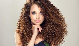 有密集的年轻,棕色毛发的妇女,弹性在发型卷曲 库存图片
