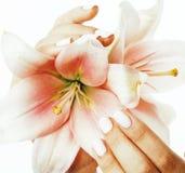 有对花百合关闭负的修指甲的秀丽精美手被隔绝在白色,温泉概念 图库摄影