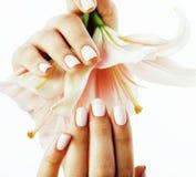 有对花百合关闭负的修指甲的秀丽精美手被隔绝在白色,温泉沙龙概念 免版税库存图片