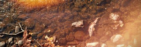 有小卵石石头的河在一个晴天 库存照片