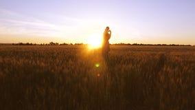 有小婴孩跳舞的爸爸和笑在金黄日落背景中在领域的用麦子 股票录像