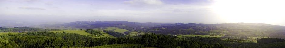 有小山、森林、植物和天空的全景 免版税库存图片