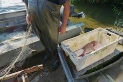 有小抓住的渔夫 免版税库存照片