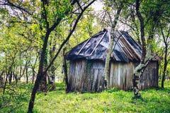 有小棚子和树的后院庭院 库存图片