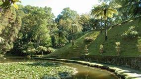 有小河的绿色庭院在圣地米格尔海岛,亚速尔上 库存照片