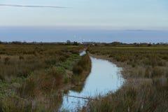 有小河的Camargue法国沼泽地 图库摄影