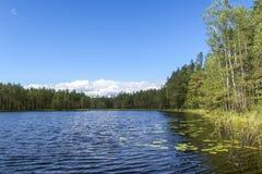 有小波浪的湖在芬兰 免版税库存照片