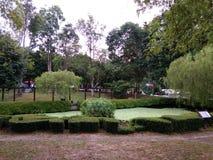 有小湖的庭院 免版税库存图片