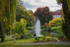 有小湖的-小西部漂泊温泉镇Marianske Lazne Marienbad -捷克的中心中央温泉公园 库存图片