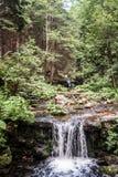 有小瀑布和树的山河 库存照片