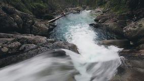 有小瀑布瀑布的山河在森林里 股票录像