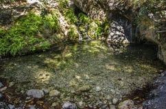 有小瀑布的一个森林湖被奉献按日晒黑, 免版税库存图片