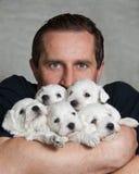 有小狗的人 免版税库存照片