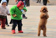 有小狗的愉快的中国孩子 库存照片