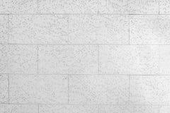 有小的举行的被吸收的墙壁全部在区域和砖样式线附近 免版税库存图片
