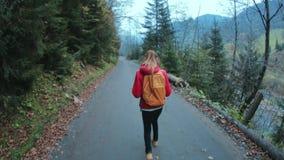 有小背包的妇女徒步旅行者,走在路在森林里 股票视频