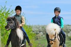 有小马的二个男孩 库存图片