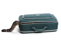 有尾巴的手提箱 图库摄影