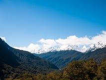 有山和树的原野 库存照片