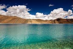 有山拉达克的,印度蓝色Pangong湖 库存照片
