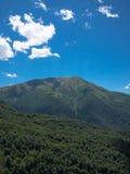有山的密集的森林 免版税库存图片