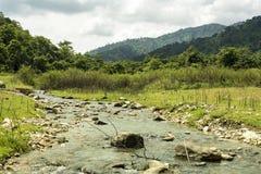 有山的小河 免版税图库摄影