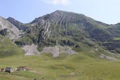 有山的山村在背景中 库存图片
