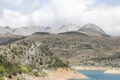有山的湖在背景和树中 库存图片
