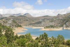 有山的湖在背景和树中 免版税库存照片