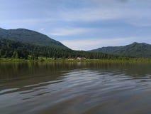 有山的湖,阿尔泰边疆区,绿色木头,狂放的自然 免版税库存照片