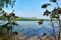 有山的Kampot柬埔寨河在背景和美好的风景中 免版税库存图片