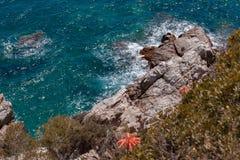 有岩石的夏天蓝色海 免版税图库摄影
