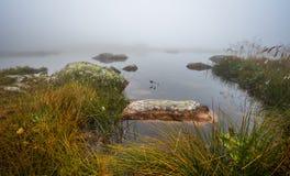 有岩石的小塔恩省在薄雾 库存图片