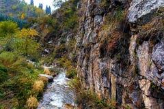 有岩石的山河在峡谷 秋天山 绿色,黄色和红色叶子 免版税库存图片