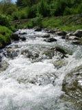 有岩石的河在春天期间 免版税库存照片