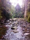 有岩石的河 库存图片