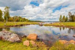 有岩石的瑞典湖在夏天 免版税库存照片