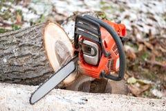 有工具和切好的树的靠汽油发动的锯 免版税库存照片