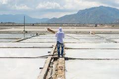 有工具的工作者去为盐领域工作 免版税库存照片