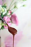 有巧克力ganache的茶匙 免版税库存图片