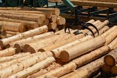 有布洛克木头的起重机在锯木厂 免版税库存照片