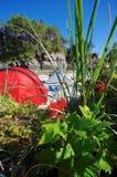 有帐篷的印度画笔在背景,不列颠哥伦比亚省中央海岸中  免版税图库摄影