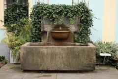 有常春藤的壁泉 免版税库存照片