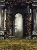 有常春藤的老庭院墙壁 皇族释放例证