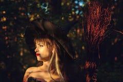 有帽子和笤帚的美丽的妇女巫婆 库存图片