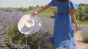有帽子奔跑的无忧无虑的妇女通过花卉沼地 影视素材