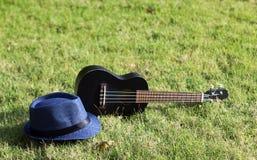 有帽子的尤克里里琴在绿草 库存图片